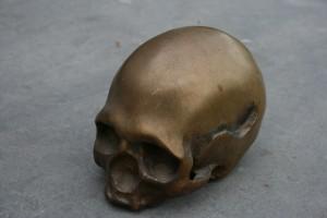 schedel mens
